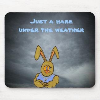 Ein Hase unter dem Wetter Mousepad