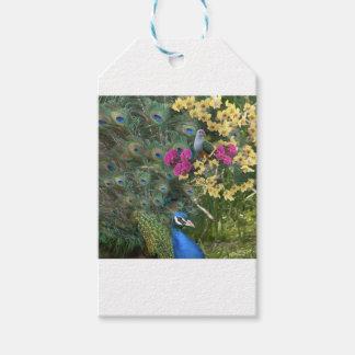 Ein Pfau und die Taube in einer Welt der Orchideen Geschenkanhänger