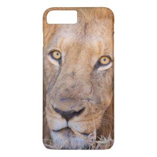 Ein Porträt eines Löwes iPhone 8 Plus/7 Plus Hülle