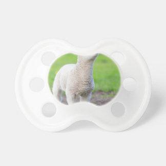 Ein weißes neugeborenes Lamm stehend im grünen Schnuller