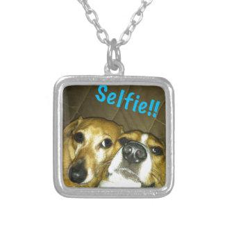 Eine Dackel und ein Beagle, die ein selfie nehmen Versilberte Kette