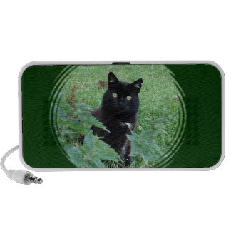 Eine niedliche neugierige schwarze Katze auf Ihrem Mp3 Lautsprecher
