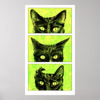 Eine Studie der Ohren der Katze Poster
