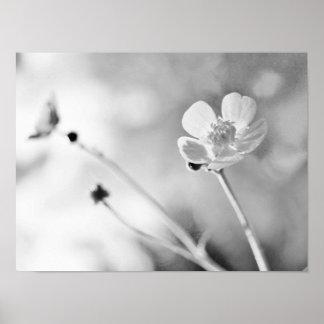 Einfache Blume Schwarzweiss Poster