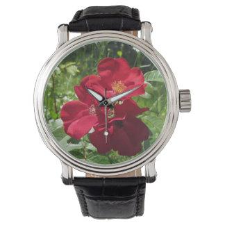 Einfache Rote Rosen wms Uhr