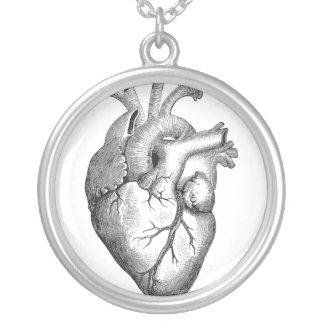 Einfache Schwarz-weiße Anatomie-Herz-Illustration Versilberte Kette