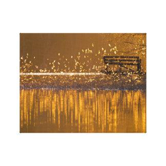 Einsame Bank durch den See im goldenen Licht Leinwanddruck