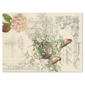 Eintagsfliege-Vogel Decoupage Seidenpapier