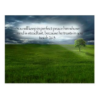 Einziger Baum-blauer Himmel-Bibel-Vers Postkarte
