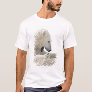 Eisbär, der in einem Kampf mit einem anderen Bären T-Shirt