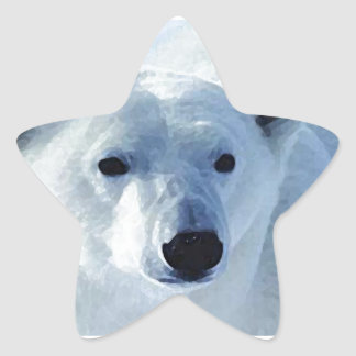 Eisbär Stern-Aufkleber