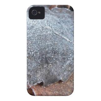EISIGES HERBST-BLATT iPhone 4 COVER