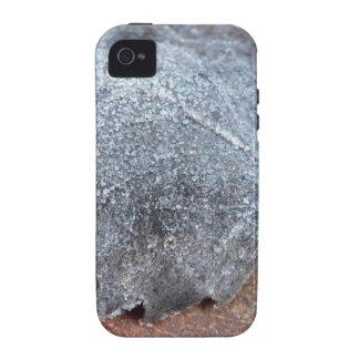 EISIGES HERBST-BLATT iPhone 4/4S CASE