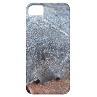 EISIGES HERBST-BLATT iPhone 5 CASE