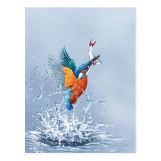 Eisvogelfliegen aus dem Wasser heraus Postkarte