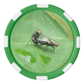 Ekliges Fliegen ~ Pokerchipset Poker Chips Set