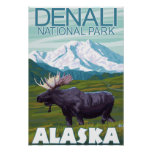 Elch-Szene - Denali Nationalpark, Alaska Poster