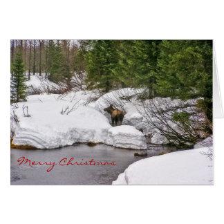 Elche in der Schnee-Gruß-Karte Karte