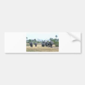 Elefant-Familie Tom Wurl.jpg Autoaufkleber