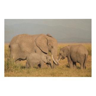 Elefant mit Jungen Holzdruck