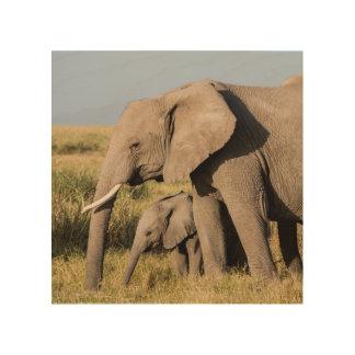 Elefant-Mutter und ihr Baby Holzleinwand
