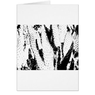 Elefant-Ohr-Kaktus in Schwarzweiss Karte