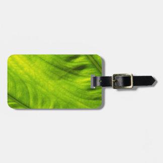 Elefant-Ohr-Wasserbrotwurzel-Gepäckanhänger Gepäckanhänger
