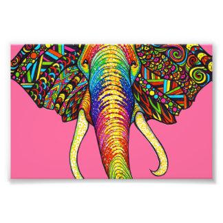 Elefant Photos