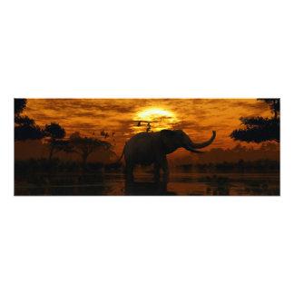 Elefant-Sonnenuntergang Fotografische Drucke