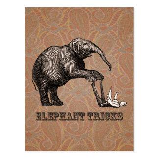 Elefant-Tricks - lustiger ZirkusPachyderm Postkarte