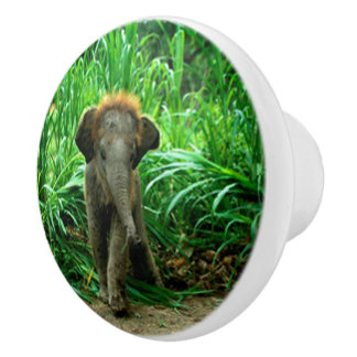 Elefant und Gras Keramikknauf
