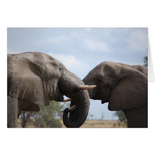 Elefanten bei Kruger Mitteilungskarte