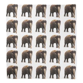 Elefanten Kopftuch
