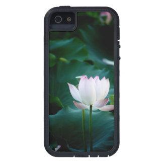 Elegante weißer Lotos-Blume Schutzhülle Fürs iPhone 5