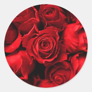 Eleganter Rosen-Aufkleber Runder Aufkleber