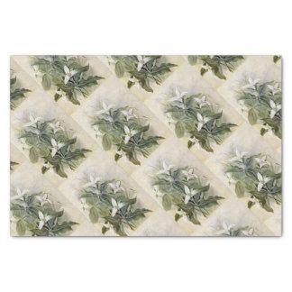 Elegantes grünes weißes Wildblume-Seidenpapier Seidenpapier