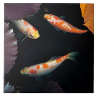 Elegantes koi drei im Wasserlilienteich Fliese