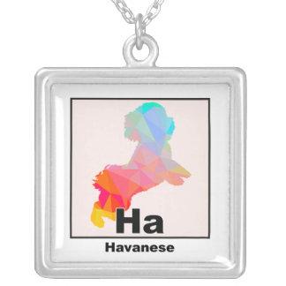 Elementares Havanese Versilberte Kette