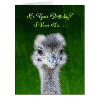 Emu - haben Sie einen Emusing Geburtstag Karte