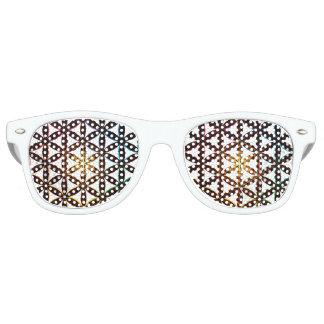 Energieausrichtungs-Schatten! Retro Sonnenbrillen