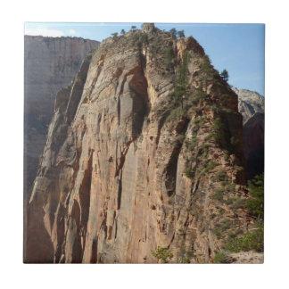 Engel, die an Zion Nationalpark landen Kleine Quadratische Fliese