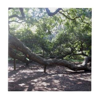 Engels-Eichen-Glieder Kleine Quadratische Fliese