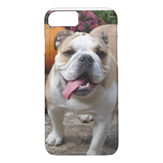 Englische Bulldogge niedliches lustiges iPhone 7 iPhone 8/7 Hülle