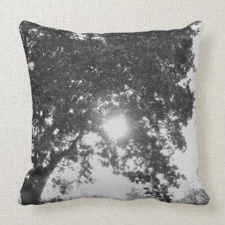 Englische Landschaftssonne durch einen Baum Kissen