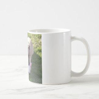 Englische Mastiffs-Regel Kaffeetasse