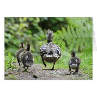 Enten-Familie Grußkarte