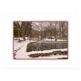 Enten-Teich in der Winter-Schnee-Postkarte Postkarte