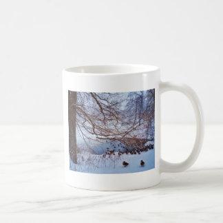 Enten-Versammlung um einen gefrorenen Teich Kaffeetasse