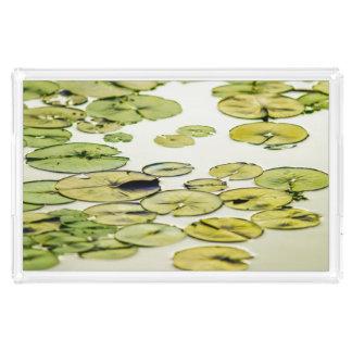 Entspannende grüne Lilien-Auflage-Teich-Wartezeit Acryl Tablett