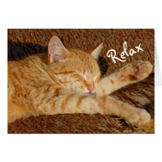 Entspannende Katze Karte